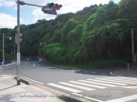 PA200061.jpg